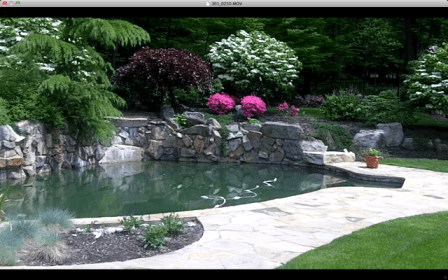Landscape maintenance of a backyard